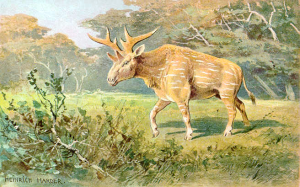 Sivatherium (Heinrich Harder)