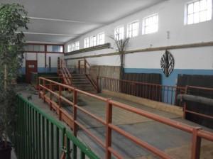 Flusspferdgehege (Zirkus Krone Zoo)