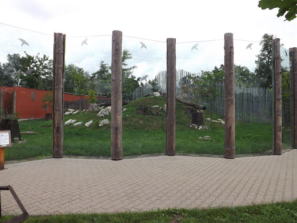 Löwengehege (Zoo Hodonin)