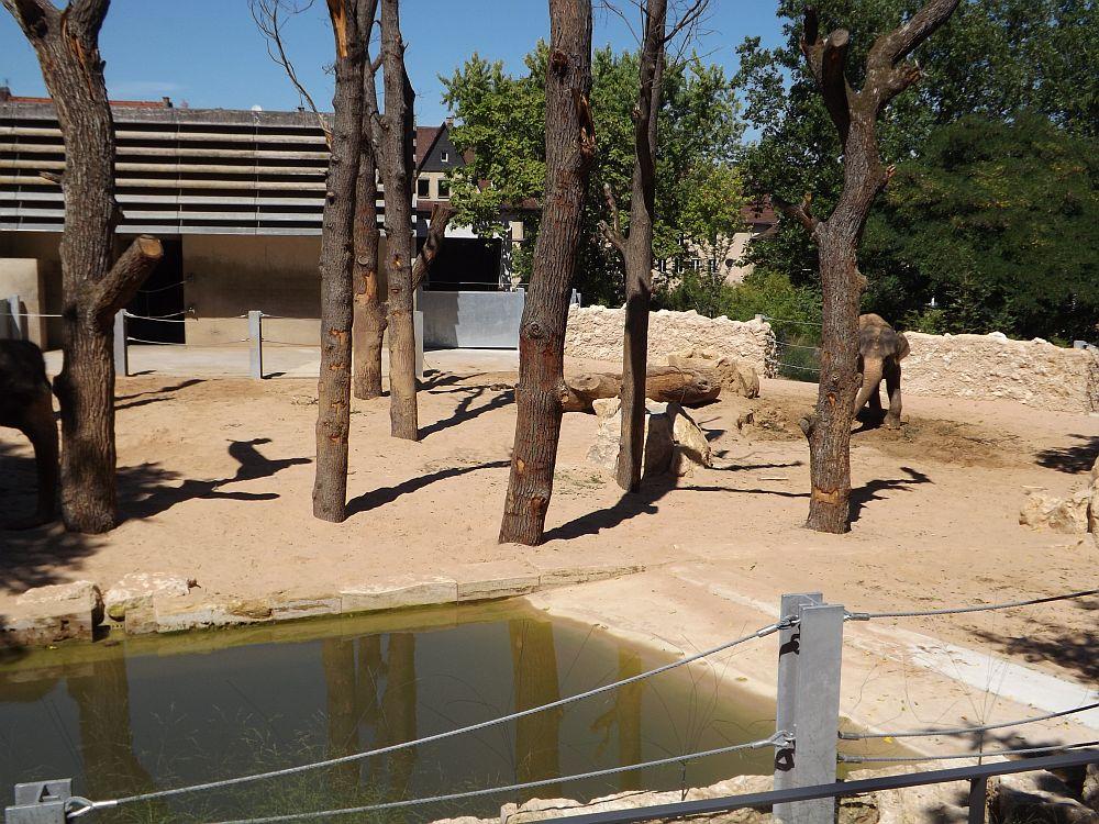 wildpark stuttgart dildo größe