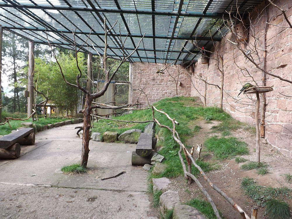 Begehbare Papageienvoliere (Tierpark Suhl)
