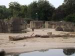 Elefantenanlage (Zoo Köln)