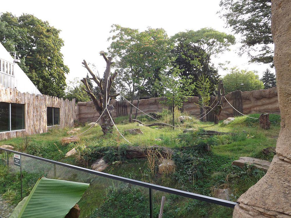 Gorillagarten (Zoo Krefeld)