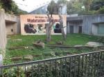 Schimpansengehege (Erlebniszoo Hannover)