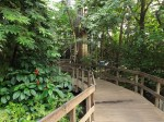 Tropenhalle(Zoo Krefeld)