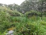 Begehbare Vogelvoliere (Naturzoo Rheine)