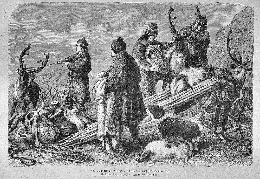 Das Beladen der Rennthiere beim Aufbruch zur Sommerreise (Die Gartenlaube, 1875)