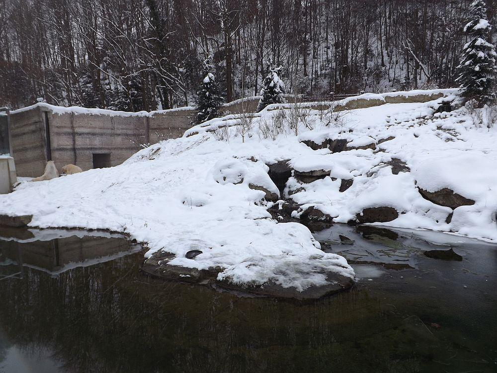 Eisbärenanlage (Tierpark Hellabrunn)