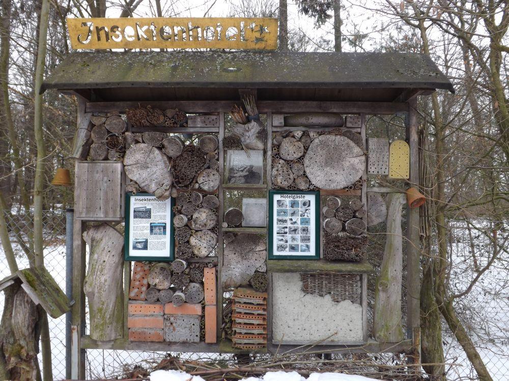 Insektenhotel (Zoologischer Garten Hof)