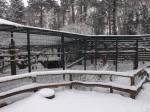 Jaguaranlage (Zoo Aschersleben)