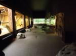 Fledermausgrotte, Blick in den Bereich der NIchtfledermäuse (Tierpark Hellabrunn)