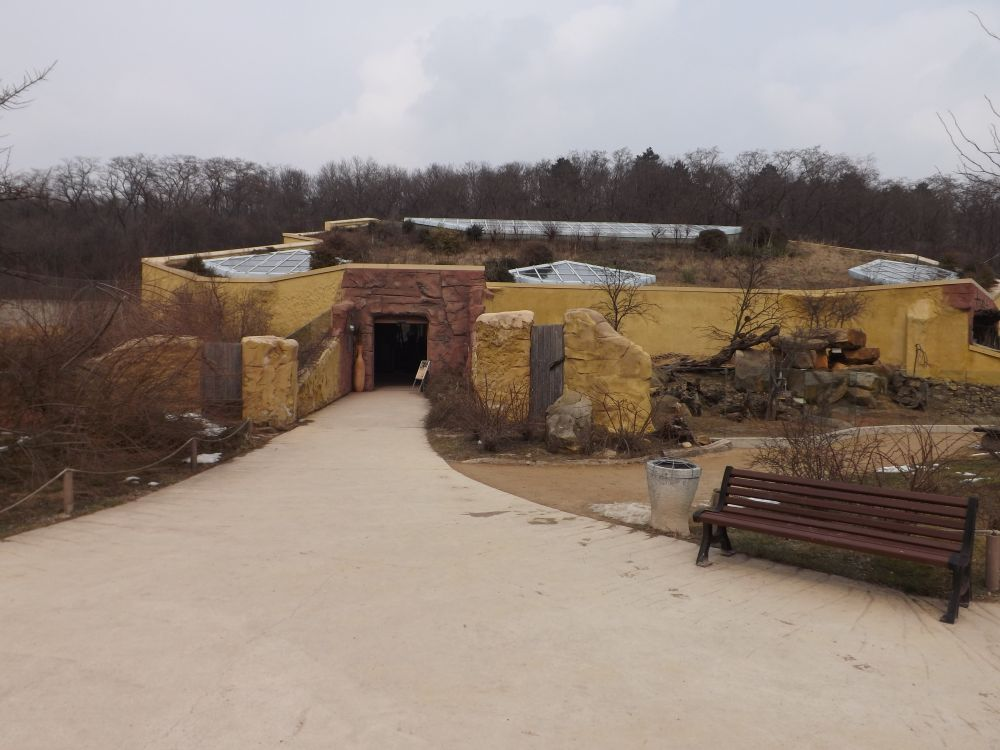Löwensavanne (Thüringer Zoopark)
