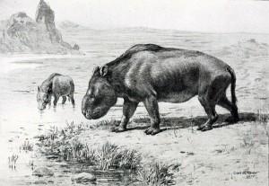 Nesodon (Charles Knight)