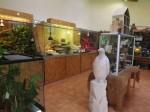 Dschungeltiere (Zoo der Minis)