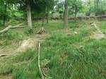 Bärenanlage (Zoo Brno)