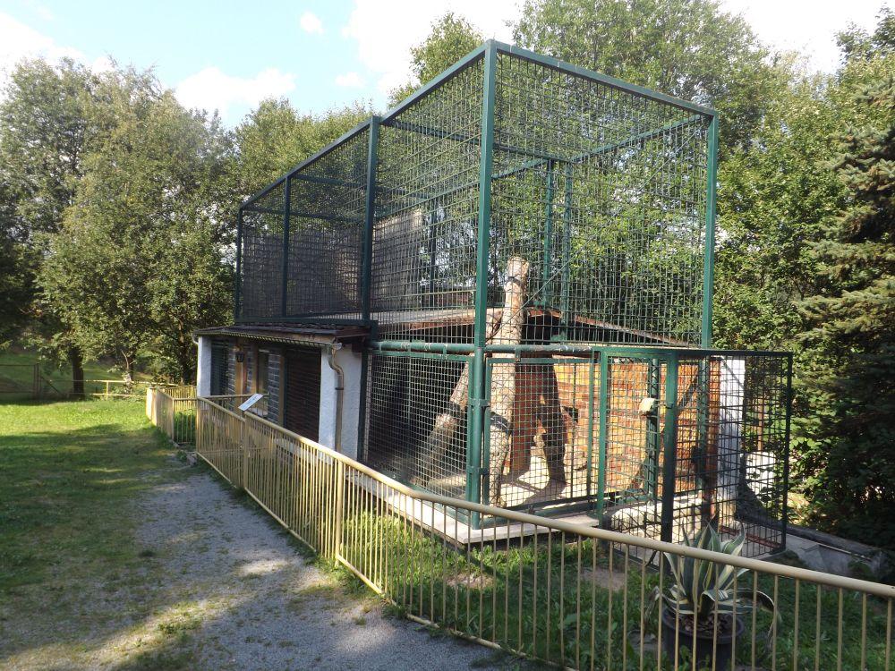 Leopardenanlage (Tierpark Klingenthal)