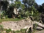 Malaienbäranlage (Zoo Usti)
