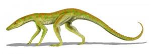 Terrestrisuchus gracilis, ein Vertreter der Sphenosuchia (© N. Tamura)