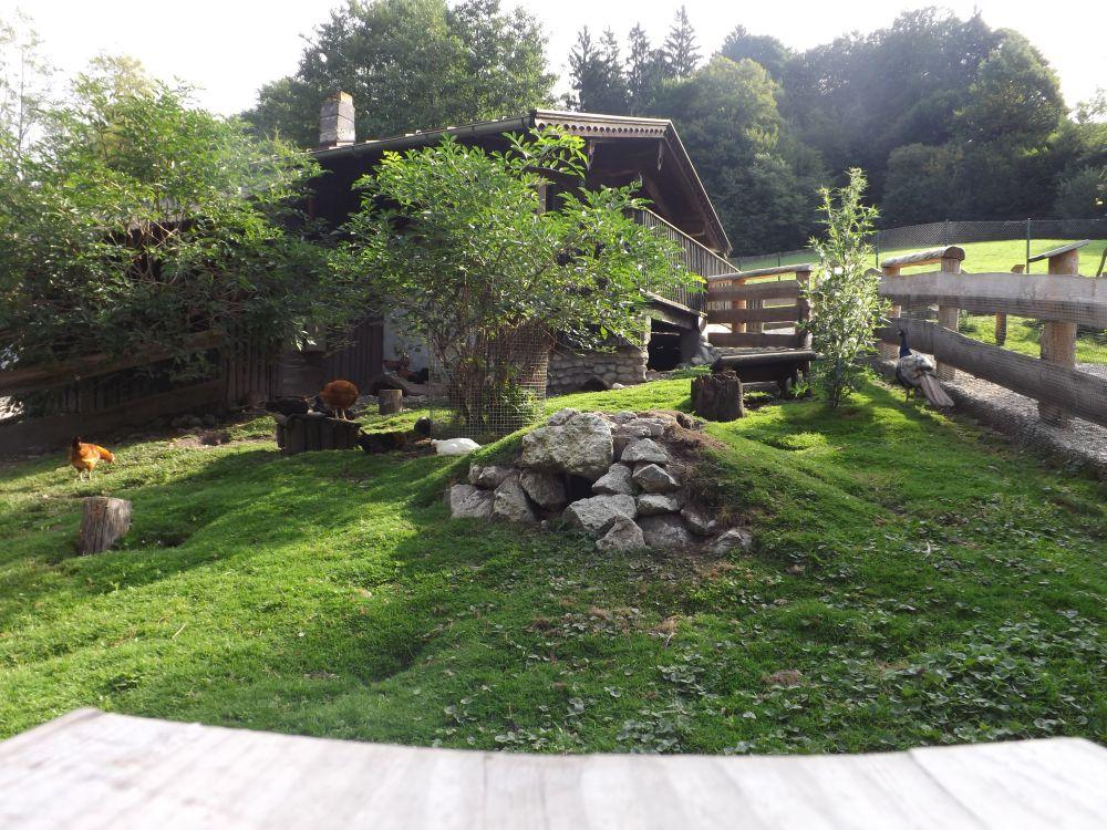 Bauernhof (Raritätenzoo Ebbs)