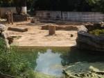 Außenanlage der Elefanten (Zoo Dresden)