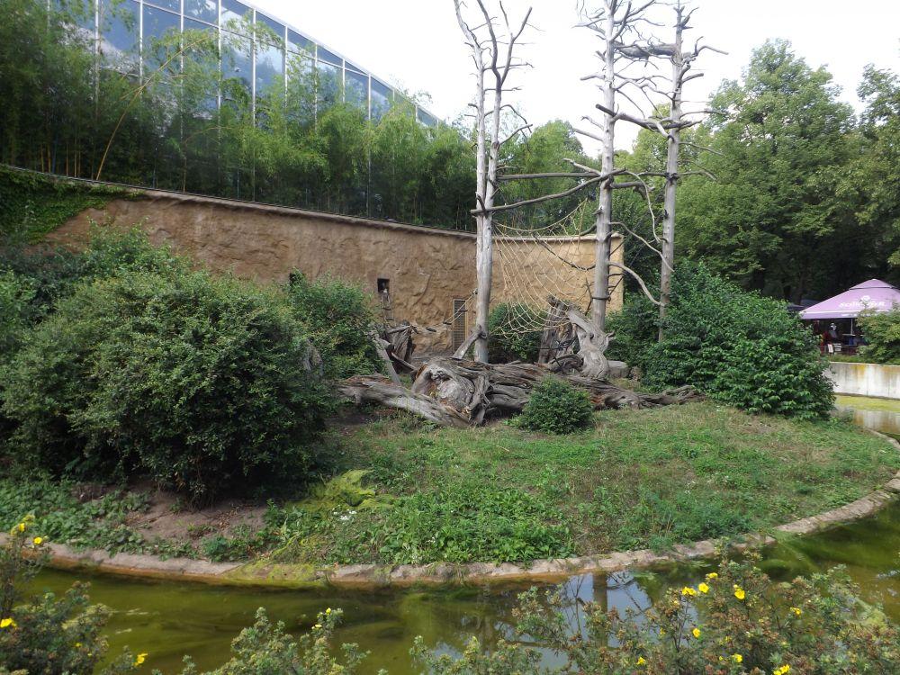 Außenanlage der Mandrills (Zoo Dresden)