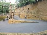 Innenanlage der Mandrills (Zoo Dresden)