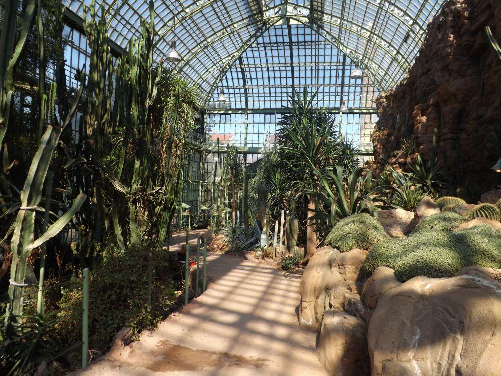Wüstenhaus (Tiergarten Schönbrunn)