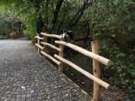 Brückengeländer Vogelvoliere (Tierpark Hellabrunn)