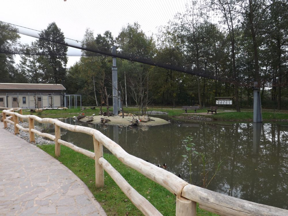Flamingoland (Tierpark Limbach-Oberfrohna)