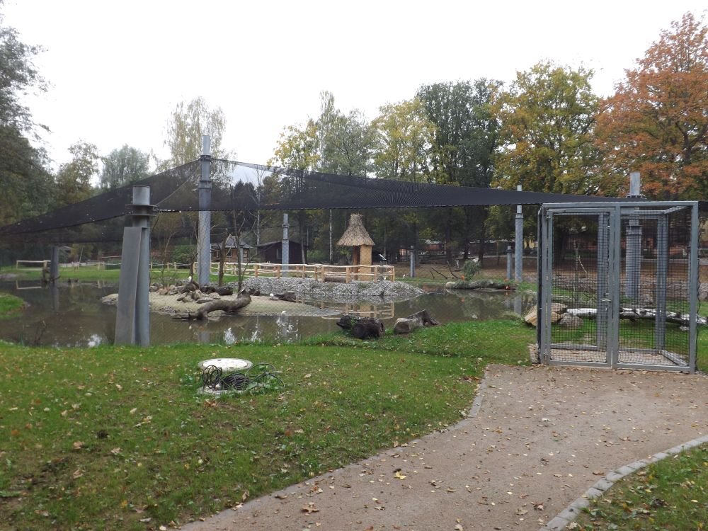 Flamingoland Tierpark Limbach Oberfrohna Der Beutelwolf Blog