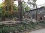 Löwenanlage (Zoo Hoyerswerda)