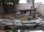 Geplante Erdmännchenanlage (Zoo Hoyerswerda)