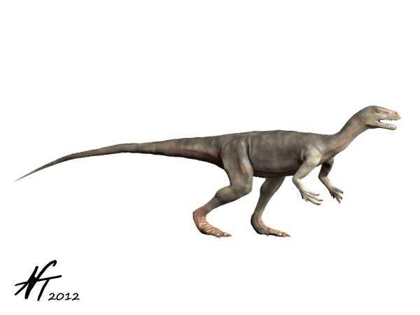 Nyasasaurus parringtoni (© N. Tamura)