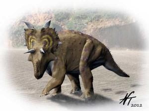 Xenoceratops foremostensis (© N. Tamura)