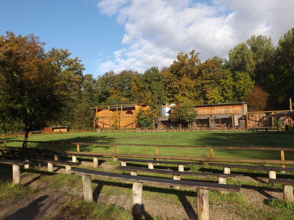 Falkenhof (Wisentgehege Springe)