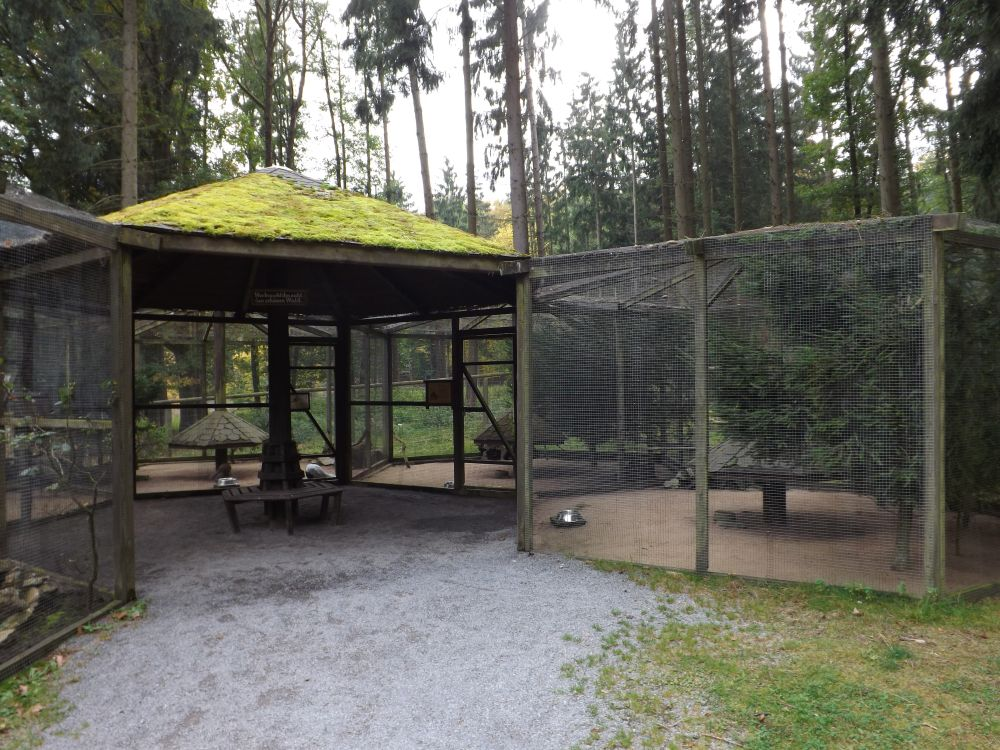 Fasanerie (Wildpark Klaushof)