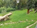 Löwenanlage (Zoo Salzburg)