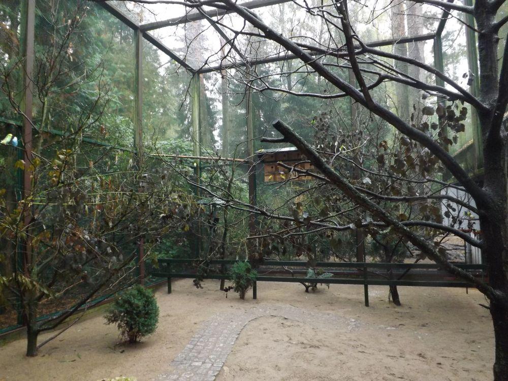 Sittichvoliere (Weltvogelpark Walsrode)