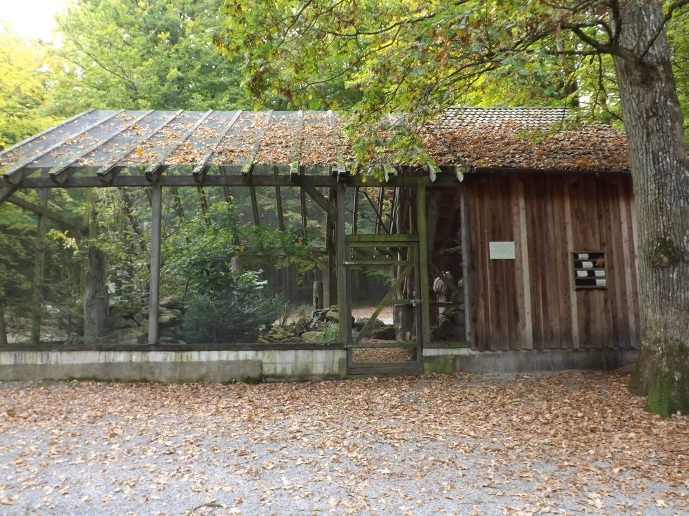 Waldvogelvoliere (Wildpark Klaushof)