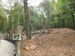 Waschbärenanlage in Entstehung (Wildpark Klaushof)