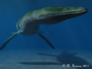 Rhomaleosaurus cramptoni  (© N. Tamura)