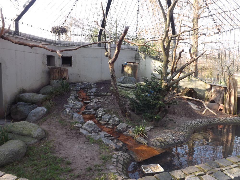 Begehbare Aravoliere (Luisenpark Mannheim)
