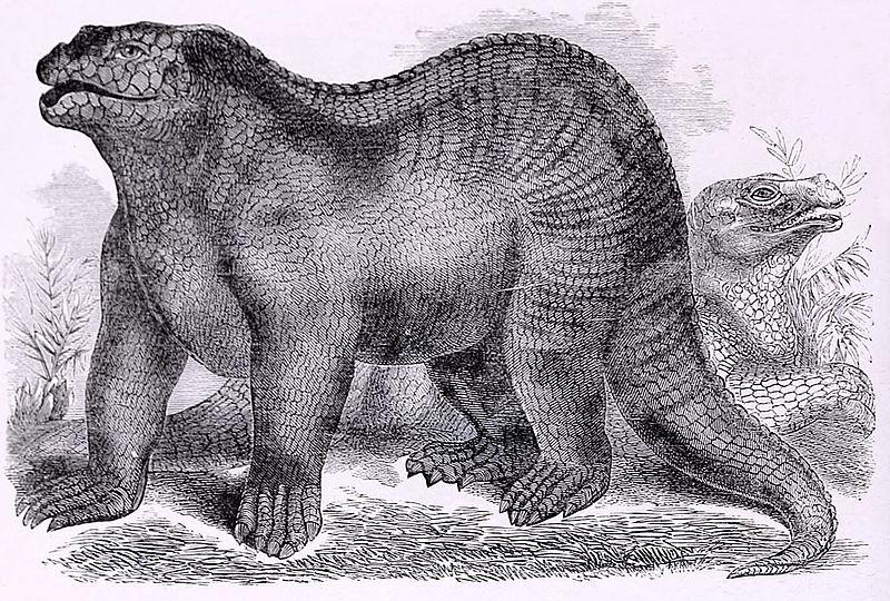 Ursprüngliche Vorstellung eines Iguanodons (Samuel Griswold Goodrich)
