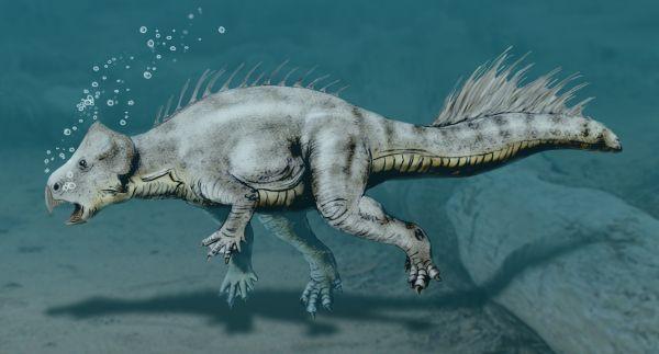 Koreaceratops hwaseongensis (© N. Tamura)