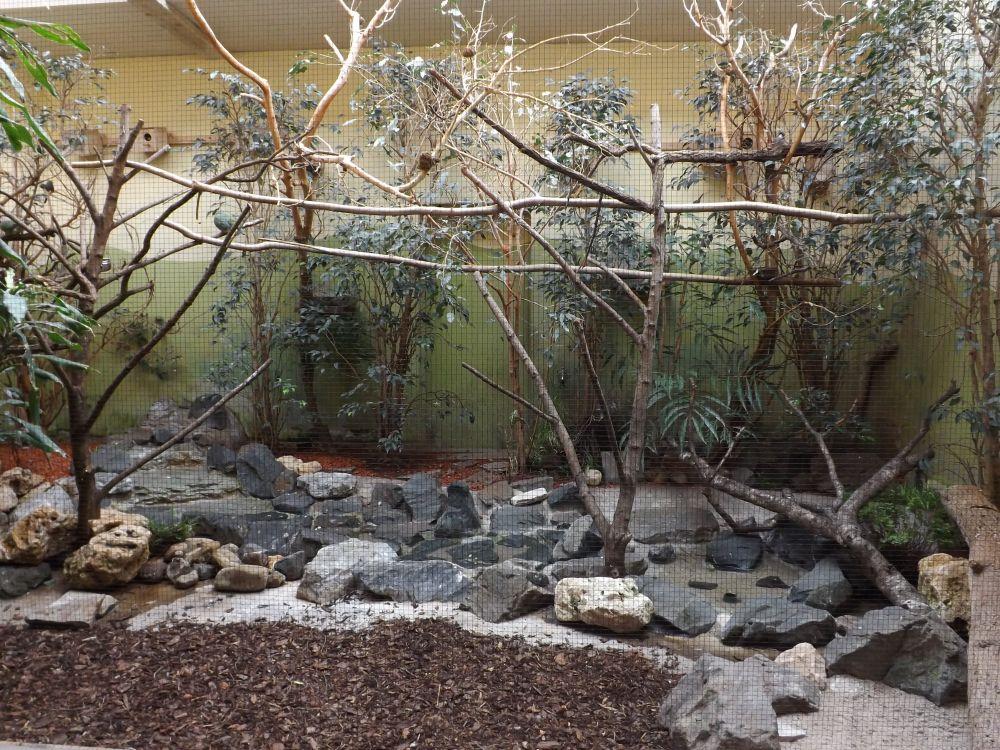 Anlage für asiatische Vögel (Zoo Augsburg)