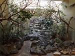 Anlage für Balistare und andere (Zoo Augsburg)