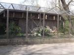 Voliere für Kolkraben (Tierpark Hellabrunn)