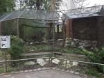 Voliere für Rotschnabelkittas (Tierpark Hellabrunn)