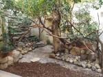 Anlage für Triele, Glanzstare und andere (Zoo Augsburg)