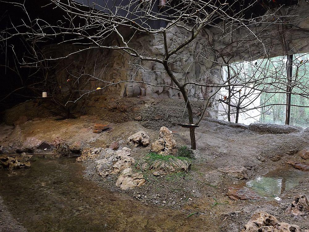 Anlage für Webervögel und Unzertrennliche (Tierpark Hellabrunn)